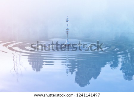 Water drop splash with water droplets and circle ripples at the foggy morning in forest lake with trees reflected on water. Liquid design template element. Ecology and water saving concept. 3D render