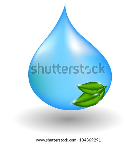water drop with green leaves.