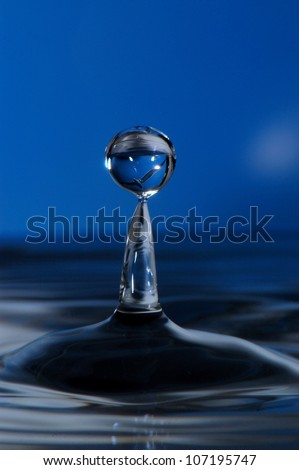 water droplet with a blue background, and seabird image inside droplet