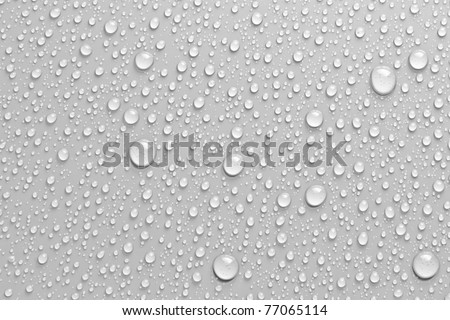 water drops an white background