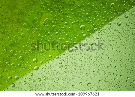 Water drops background, covered with water drops - condensation, close - up. green colors, dark and light.