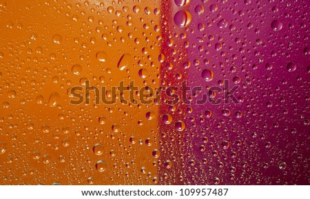 Water drops background, covered with water drops - condensation, close - up. Orange and magenta colors.