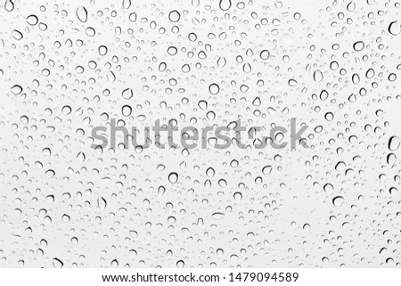 Water drops background , rain drops on glass #1479094589