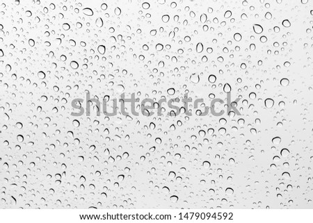 Water drops background , rain drops on glass #1479094592