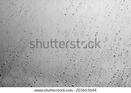 water drops on glass after rain background #203663644