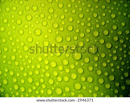 water-drops on green