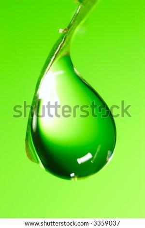 Water drops on the fresh green shoot. Super Macro