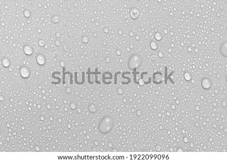 Water drops on white background texture. backdrop glass covered with drops of water.  bubbles in water