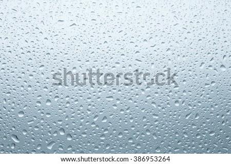 Water Drops./ Water Drops.