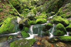 Water Falls at Fundy National Park, New Brunswick, Canada