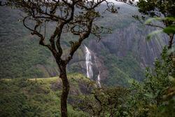water falls in the jungle od Adam's peak in Sri Lanka