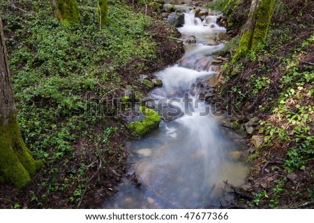 Water flowing across rocks, Uvas Canyon County Park, Morgan Hill, California