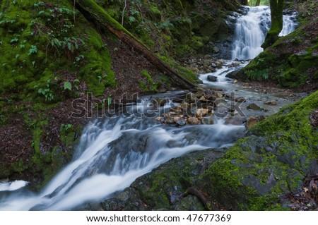 Water flowing across rocks, Uvas Canyon County Park, Morgan Hill, California
