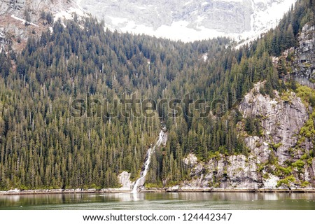 Water flowing from snow into calm water past Alaska fir trees