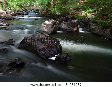 Water flowing in a forest stream in dappled sunlight