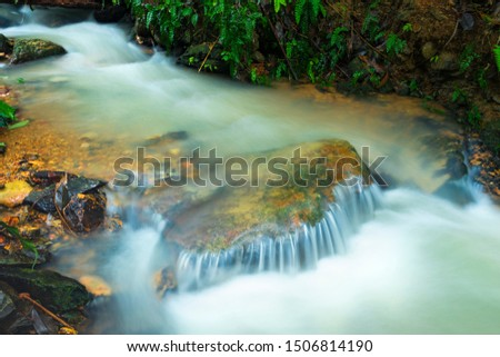 Water flowing in a stream during the rainy season #1506814190