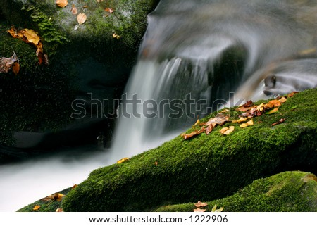 Water flowing over the mossy stones of a Smoky Mountains stream.