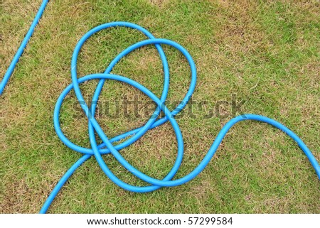 water hoses lie on the garden (1)