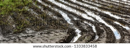 Water in the middle of flooded agriculture crops. Potato Crop Damage. #1333833458
