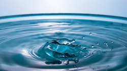 Water in the shape of a Dolphin. Water splash close-up. Crown of blue water. Water drop. Frozen splashes.