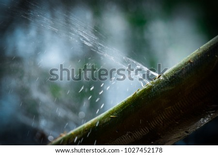 water leaking.leak form rubber tube or hole in a hose in the garden. #1027452178
