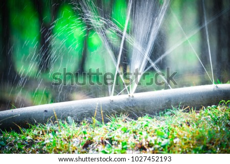 water leaking.leak form rubber tube or hole in a hose in the garden. #1027452193