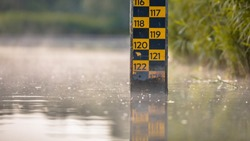 water level depth meter in river of Biesbosch nature reserve Netherlands