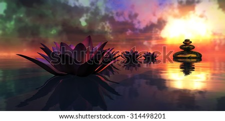 water lily floating in the water and sunset #314498201
