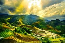 Water on field terraced of Mu Cang Chai, YenBai, Vietnam. Vietnam landscapes.