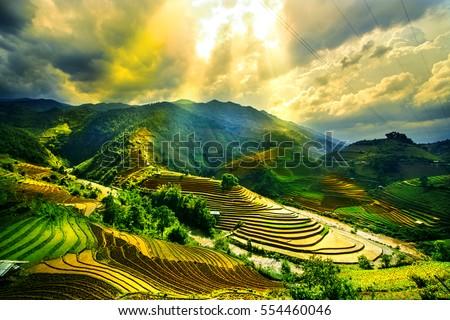 Water on field terraced of Mu Cang Chai, YenBai, Vietnam. Vietnam landscapes. #554460046