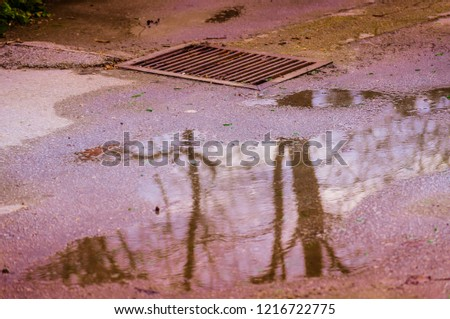 Water outlet channel drain grate with ground wet because of the rain in winter season on Marmara region of the country Turkey