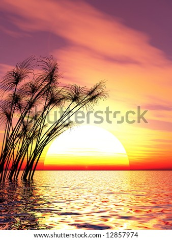 Water plants on a sea sunset  background  -  3D scene. #12857974