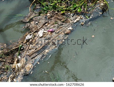 Water pollution in river with trash.
