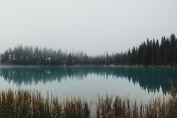 Water reflections from across the peninsula of Emerald Lake surrounded by towering pine trees and thick eerie fog in Yoho National Park, BC, Canada.