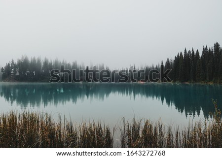 Water reflections from across the peninsula of Emerald Lake surrounded by towering pine trees and thick eerie fog in Yoho National Park, BC, Canada. stock photo