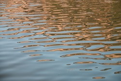 Water ripple texture background