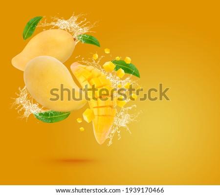 Water splash on fresh ripe mango with leaves isolated on yeloow background.  Stockfoto ©