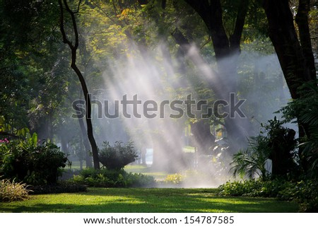 water sprau light in public park use for nature freshness in park and garden