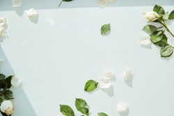 Water surface texture, white delicate background with white rose petals and leaves. Copy space. High quality photo