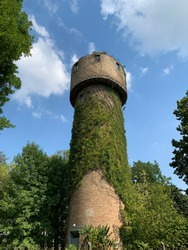 Water tower against the blue sky. The old fortress tower in the forest. Tall brick building for water storage. The wall is overgrown with green ivy.
