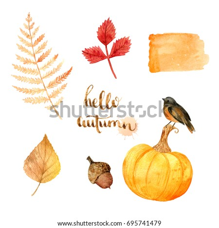 Stock Photo Watercolor autumn nature elements fern, bird, leaves, pumpkin. Hand drawn illustration. Autumn forest floral decorative.