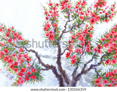 Watercolor background. The bright red flowers and lush green foliage in spring blooming of an old tree