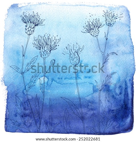 Watercolor background with beautiful color painted flowers and herbs. Colored flowers and herbs, hand-painted line. Blue background with flowers. Thistle