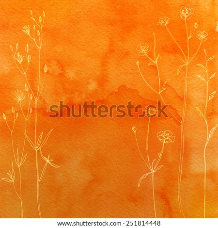Watercolor background with beautiful colored flowers and herbs painted line. Background of colored flowers and herbs.