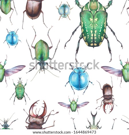 Watercolor beetles seamless pattern. Hand drawn texture with bud on white background stock photo