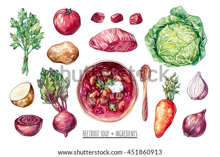 Watercolor beetroot soup with ingredients. Tomato, onion, beet, beetroot, potato, cabbage, beef, carrot. Borsch, borscht, ukrainian and russian cuisine. National dish.