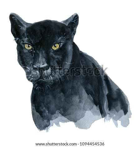 Stock Photo Watercolor black panther Wiledlife hand drawn illustration