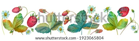 Watercolor border with strawberry berries, flowers and leaves of strawberry, strawberry isolated on a white background. Strawberry painted bed