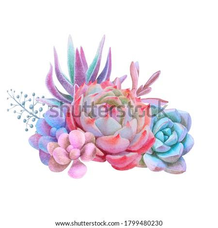 Watercolor bouquet whith pink echeveria, decorative illustration, hand drawn floral clip art stock photo