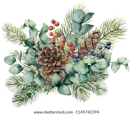 Watercolor bouquet with eucalyptus leaves, cone, fir branch and berries. Hand painted green brunch, red and blue berries isolated on white background. Illustration for design, print or background